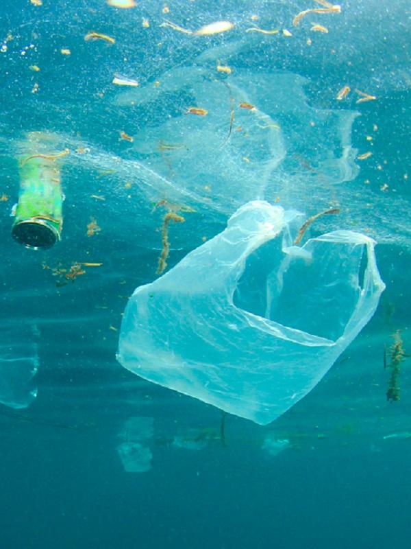 La imparable contaminación plástica