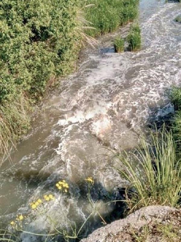 Denuncian ante el Seprona 22 puntos de vertido en la cuenca del Saja