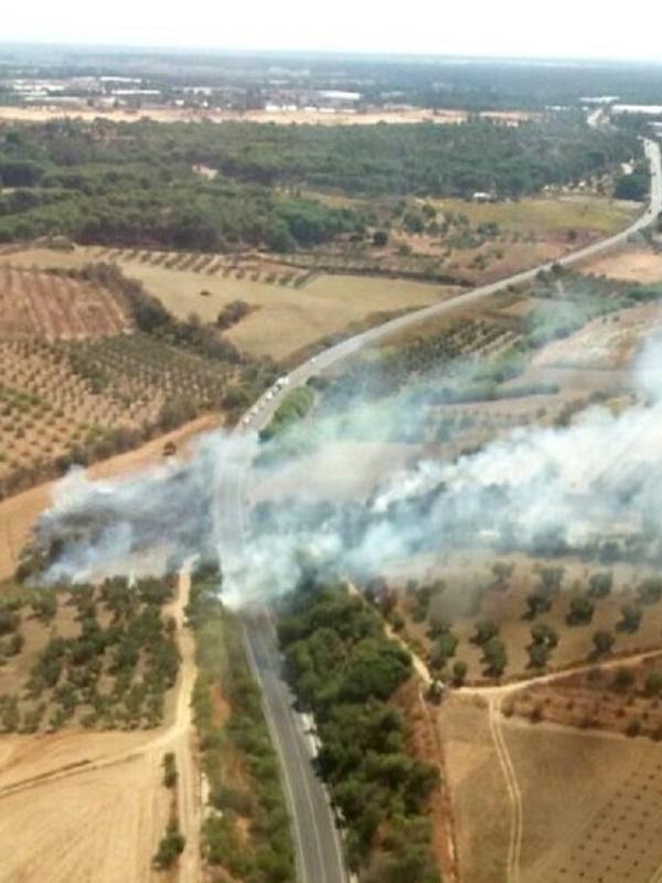 El incendio extinguido en Almonte arrasa 416 hectáreas agrícolas y 1,8 de terreno forestal