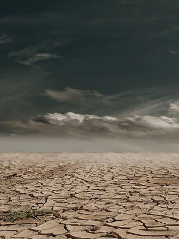 Catalunya declara la emergencia climática y se compromete a mitigarla