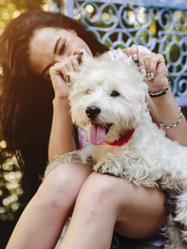 Te explicamos porque a ti sí te gustan los perros