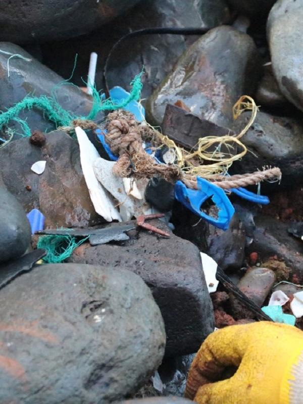 Presentan ambicioso proyecto para descontaminar los océanos de productos desechables y de plásticos