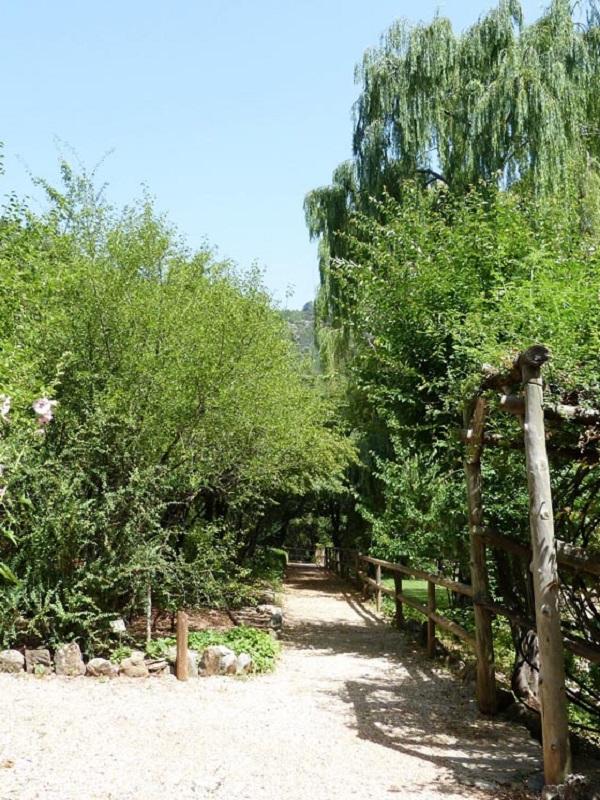 El Jardín Botánico de la Torre del Vinagre en Cazorla (Jaén) impulsa una campaña para poner en valor la flora