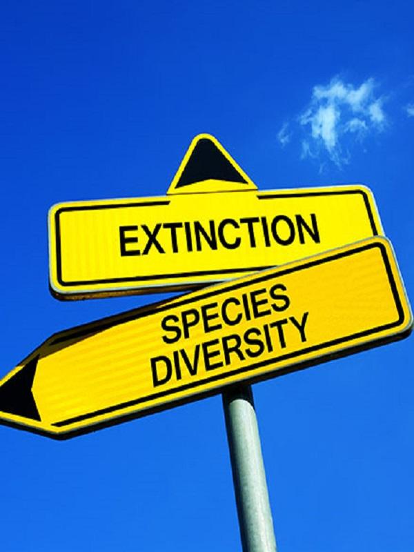 Volvo Buses ayuda a que el cambio climático no acabe con un millón de especies en peligro de extinción