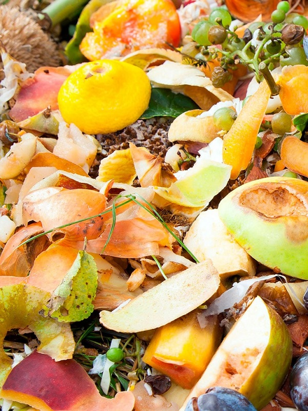 Europa contra el desperdicio alimentario