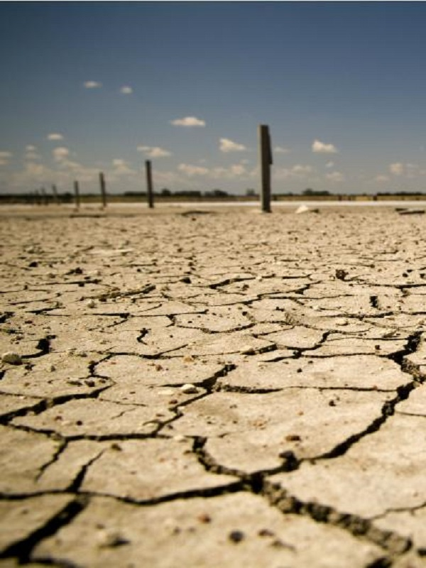 Teresa Ribera dice que Junqueras le ha expresado la voluntad de ERC de trabajar en el cambio climático