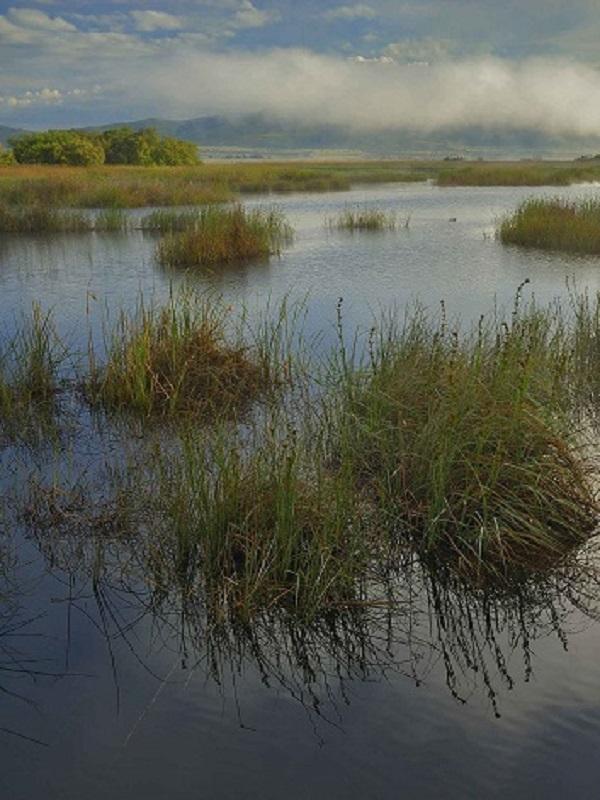 En defensa de la Directiva Marco del Agua