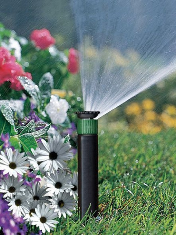 ¿Cuánta agua necesita mi jardín?