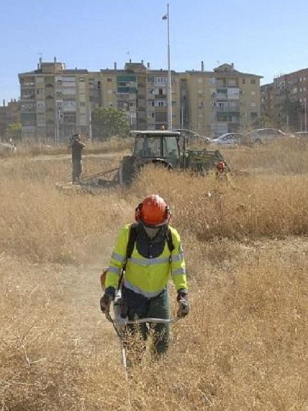 El Ayuntamiento de Logroño acomete la campaña de limpieza de parcelas para prevenir incendios, escombros y plagas