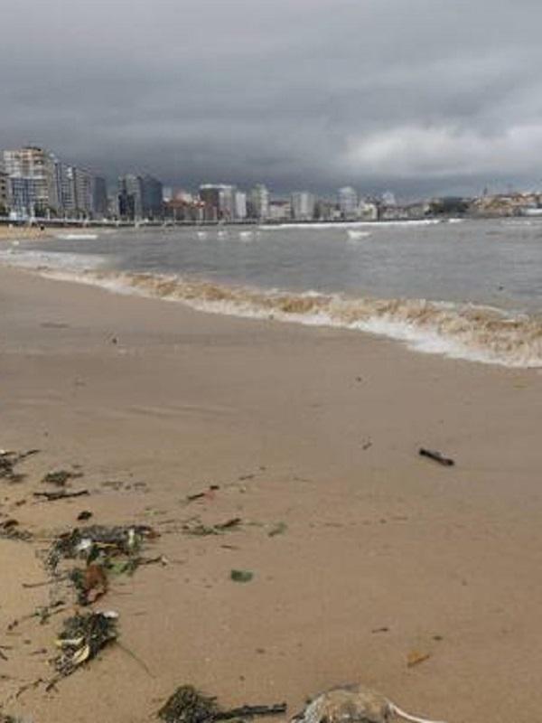 No se puede engañar con la calidad de las aguas de las playas de Gijón