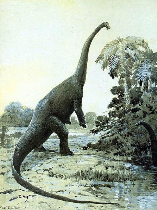 Increíble. Un dinosaurio cuadrúpedo que se hacía bípedo de adulto