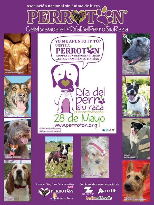 Perrotón lanza una campaña para promover los perros sin raza