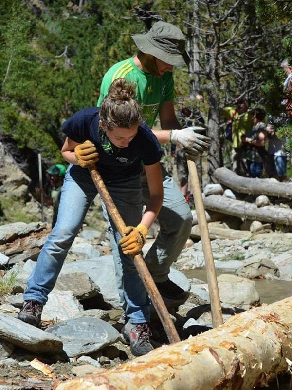 Voluntarios para proteger a los bosques del Pirineo