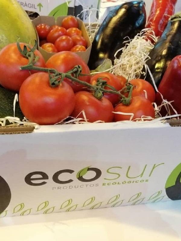 Ecosur crea tendencia fomentando los hábitos saludables
