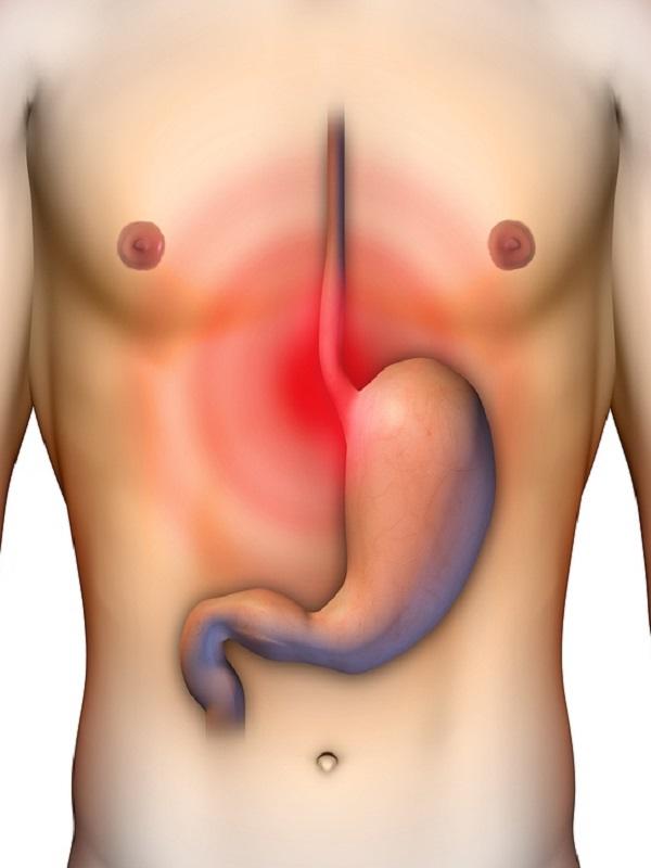 Los cinco mandamientos para evitar el cáncer en el aparato digestivo