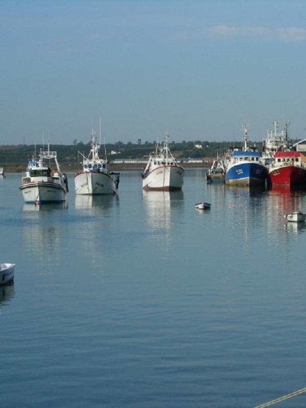 España refuerza el control de las actividades de pesca marítima