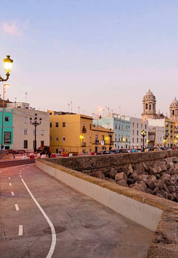 Diputación de Cádiz se compromete a implementar políticas de desarrollo sostenible en sus municipios