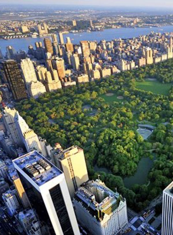 Nueva York. Las medidas de reducción de CO2 salvaron más de 5000 vidas en 2012