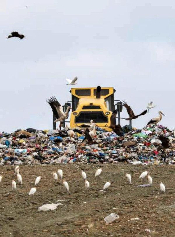 Ecologistas manifestarán a Medio Ambiente su negativa a la amplicación del vertedero de Pinto