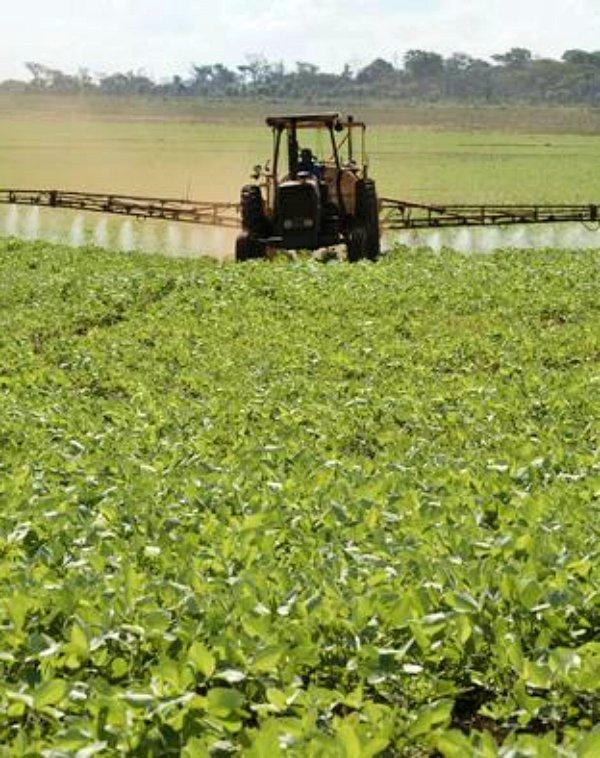 La ONU acusa a Paraguay de múltiples intoxicaciones a causa de la fumigación masiva