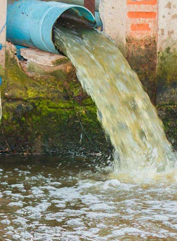 El tratamiento de las aguas urbanas 'perturba' el ecosistema de los ríos