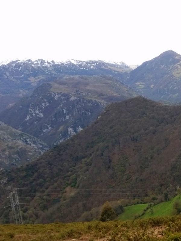 Asturias. Solicitamos se paren las obras de la urbanización de Linares en Proaza