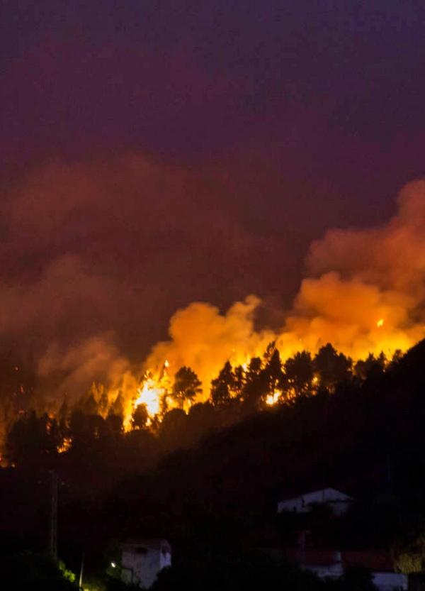 Gran Canaria. El descontrolado incendio está arrasando áreas ya quemadas años atrás