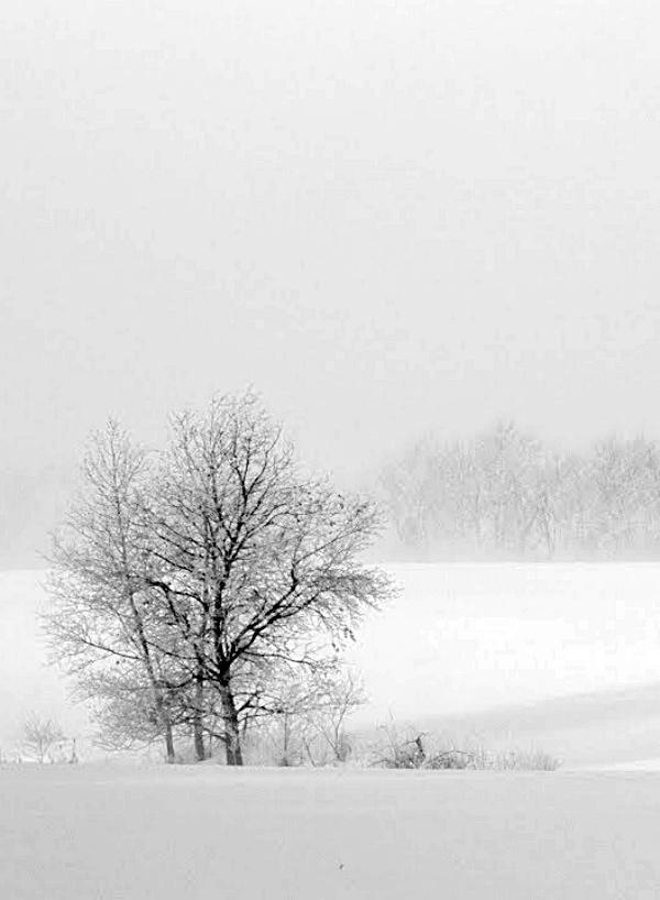 ¿Es posible un invierno nuclear?