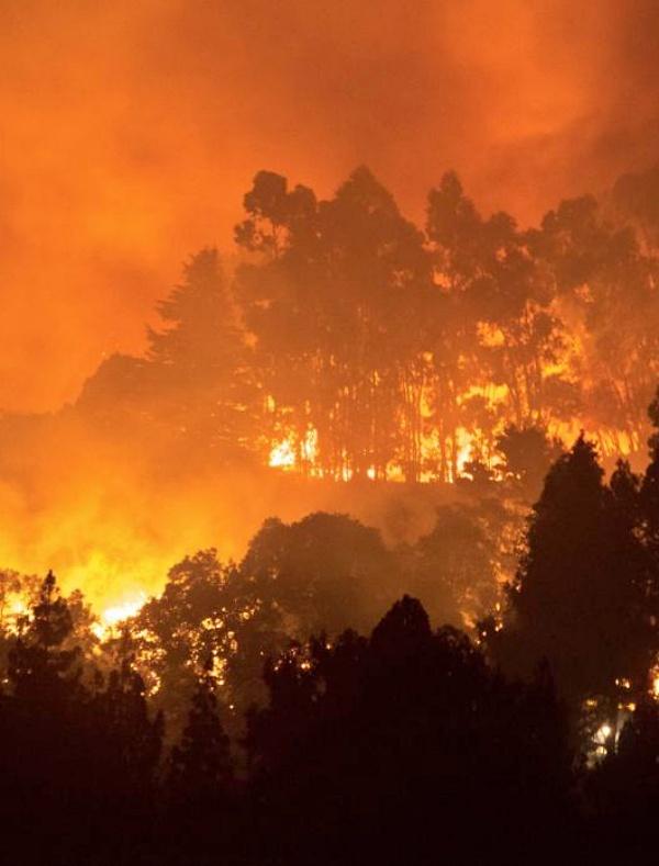 Pirómanos, negligencias y crisis climática, 'la tormenta perfecta' para los incendios de Gran Canaria