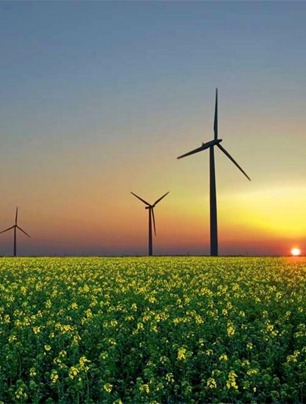 No dejes pasar esta oportunidad de formarte como 'Gestor Energético Europeo'