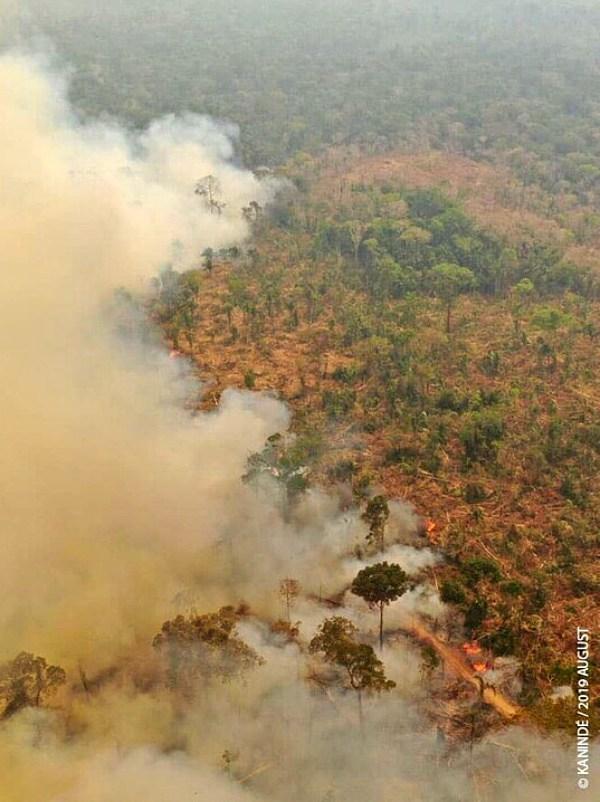 Las llamas del Amazonas ya han alcanzado Bolivia