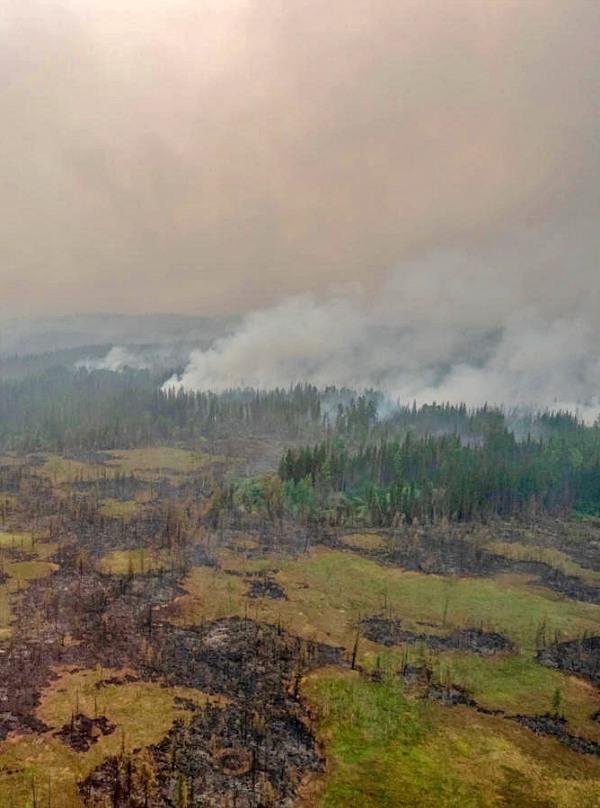 Inmensos fuegos en Sudamérica, África, Siberia e Indonesia aceleran el cambio climático