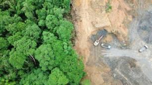 La aceleración en la deforestación amazónica, principal causante de los incendios