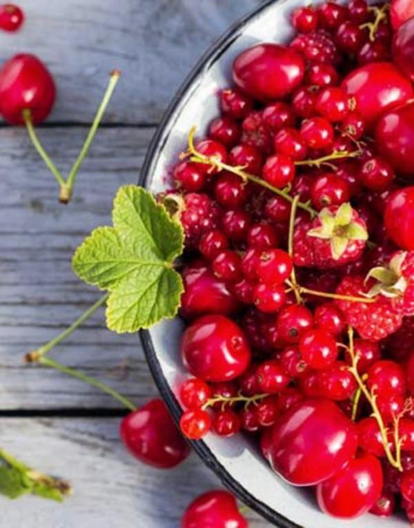 Antiinflamatorios naturales: ajo, cebolla, frutos rojos y especias