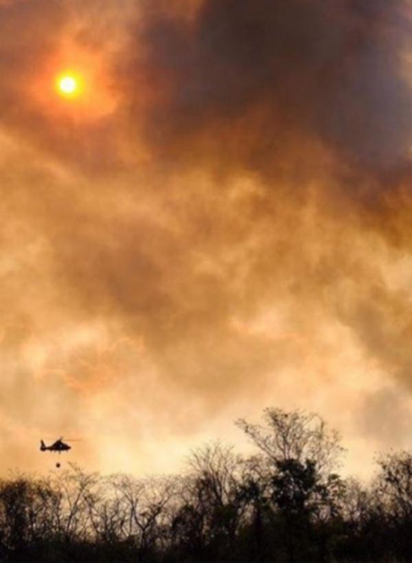 Crowdfunding para ayudar a extinguir el incendio del Amazonas, propagado hasta Bolivia