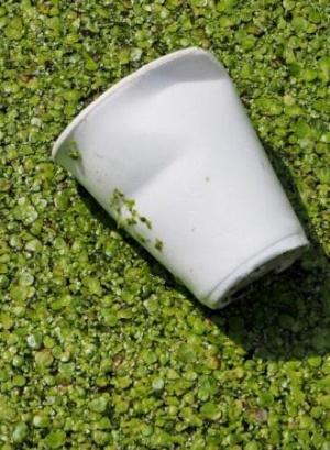 Plásticos biodegradables: buenos... pero no tanto
