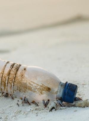 El Caribe lidera la 'economía circular' con un plan de acción contra los residuos plásticos