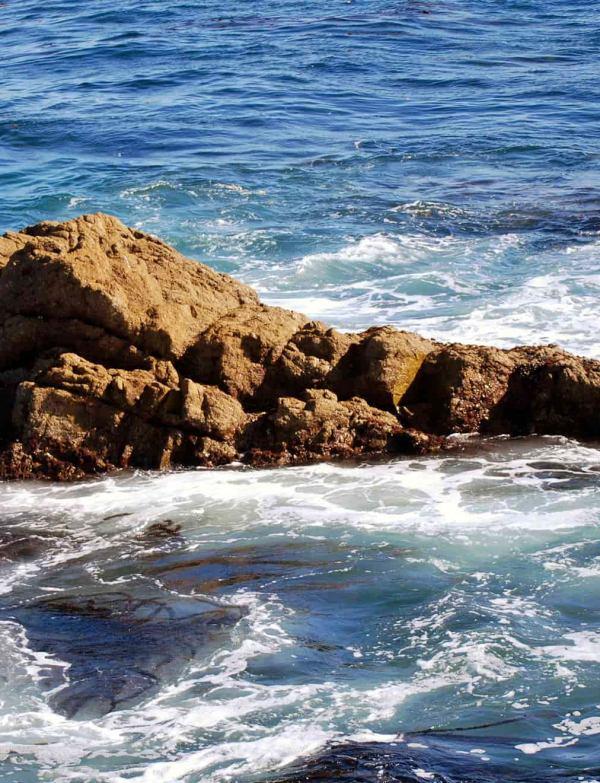 ¿Cómo varía el clima en los mares?