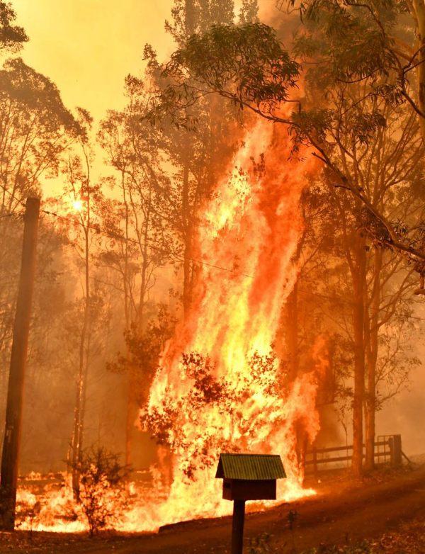 Australia en el 'triángulo del terror' del cambio climático, los incendios y el carbón