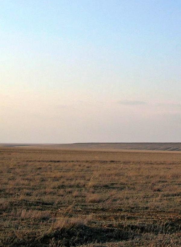 El centro de 'España' era hace millones de años una enorme 'tundra-estepa'