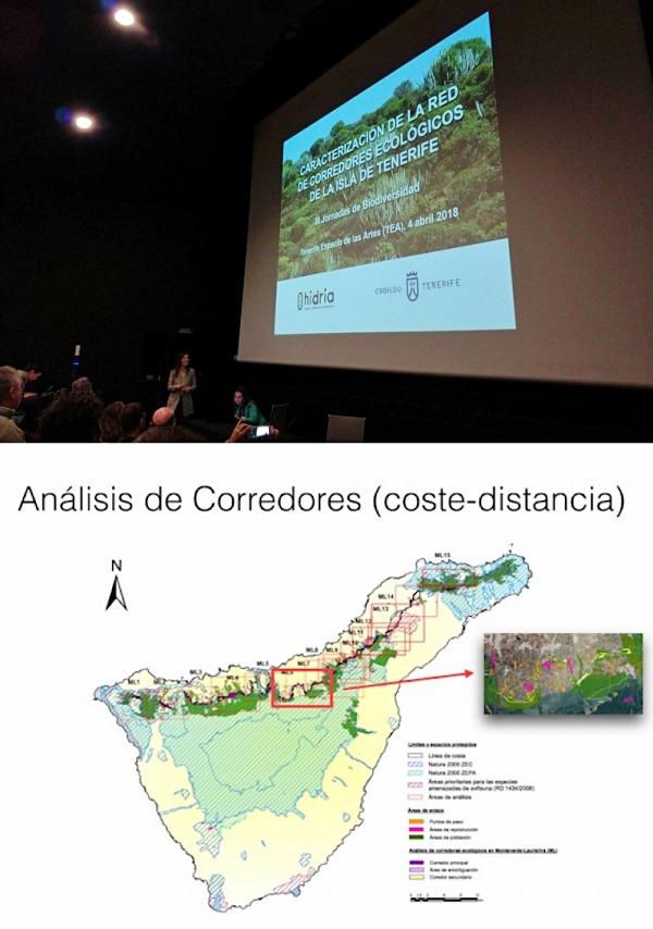 Tenerife diseña el primer corredor ecológico que conectará los espacios protegidos de la isla