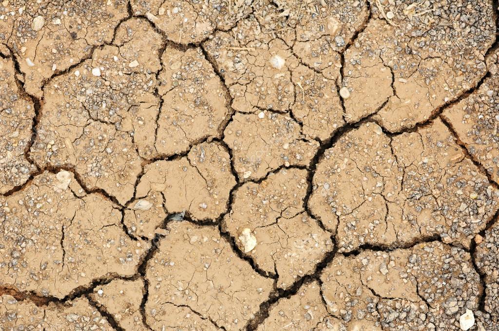 ¿Sabes qué es el efecto país y como influye en el medio ambiente? Te lo explicamos
