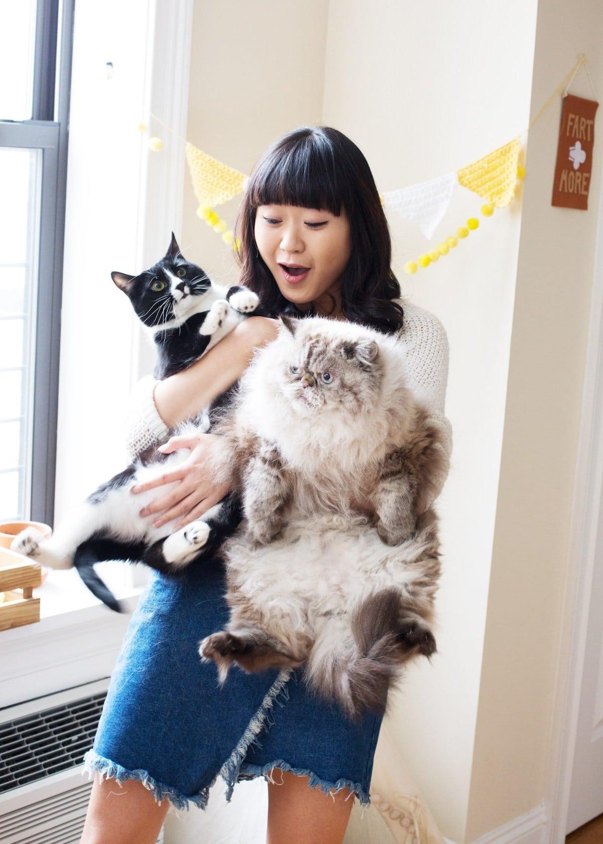Los gatos son los mejores amigos de las mujeres