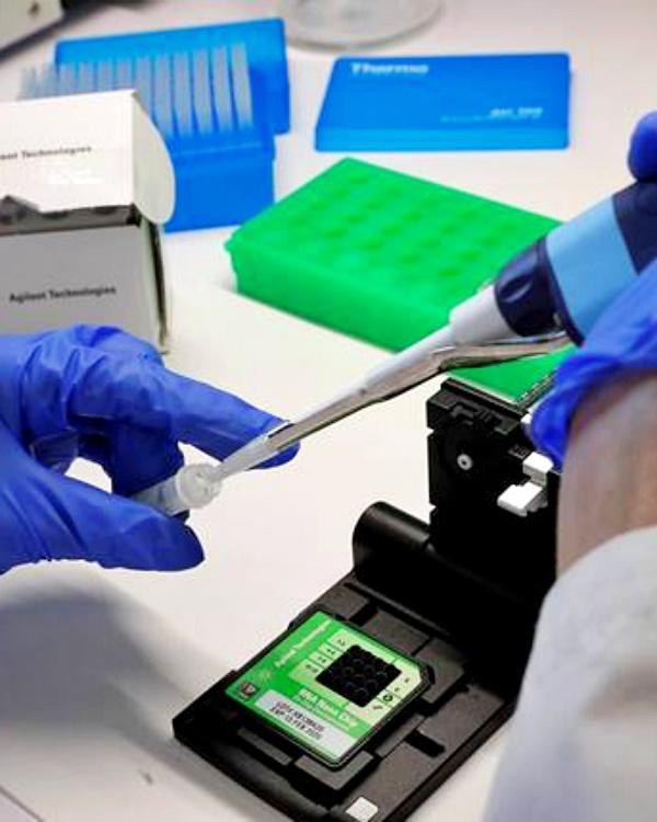 Tecnología verde, primer aditivo para envases alimentarios que elimina la listeria