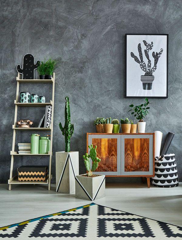 ¿Las plantas en macetas de interior mejoran la calidad del aire en tu vivienda?