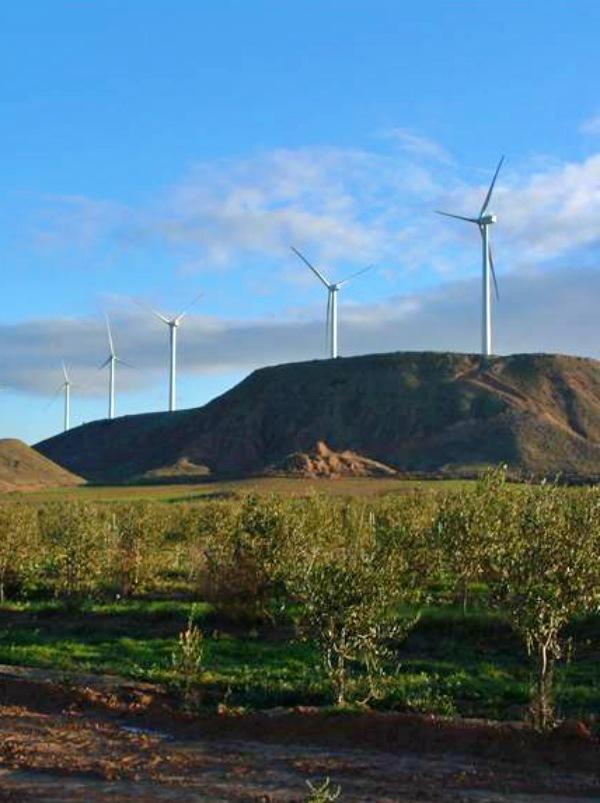 Polémica a cuenta del proyecto de parque eólico de 'La Aldea' (La Rioja)