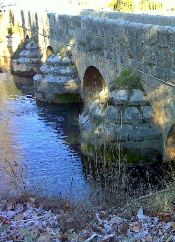 Río Tajuña, propuestas para su conservación