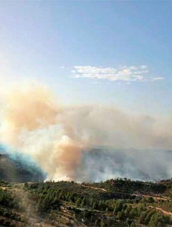 Catalunya quiere contratar personas en paro para la prevención de incendios forestales
