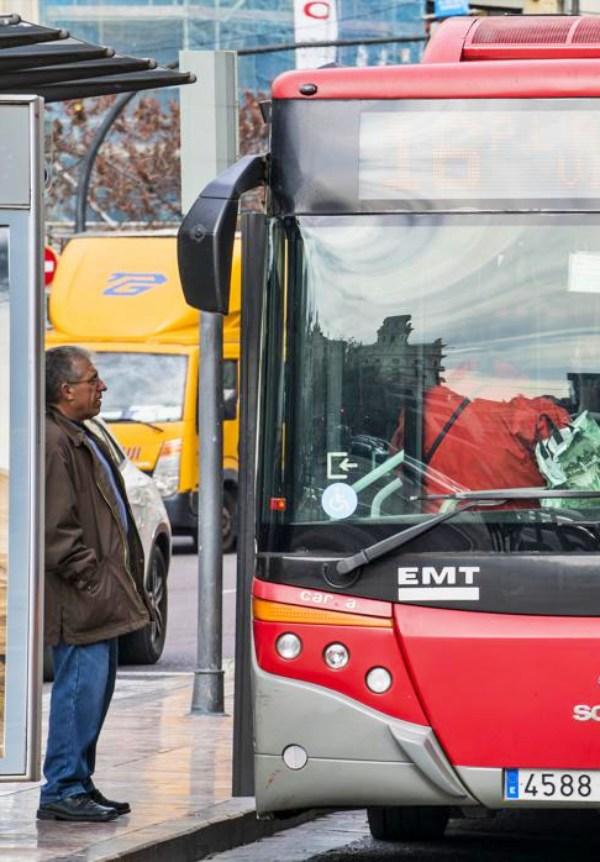 Valencia. Ahora las mascotas suben al bus con su carné de EMT