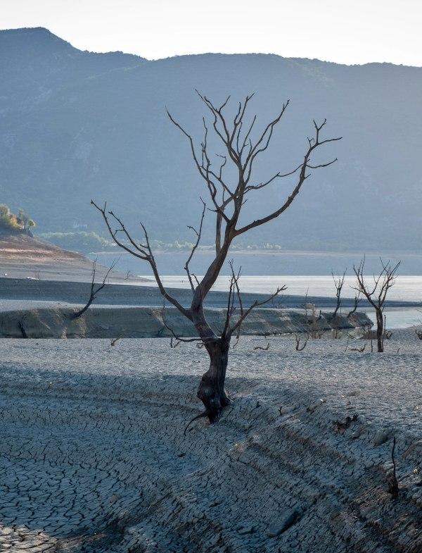 Tres cuartas partes de España están en peligro de 'desertificación'